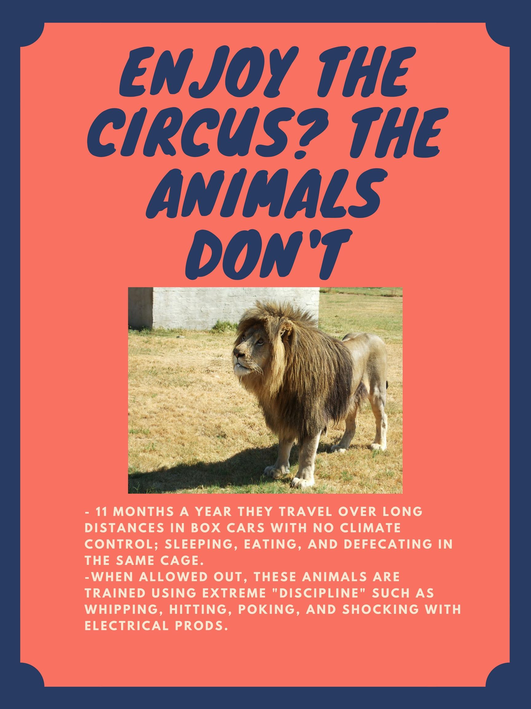boycott circus.jpg