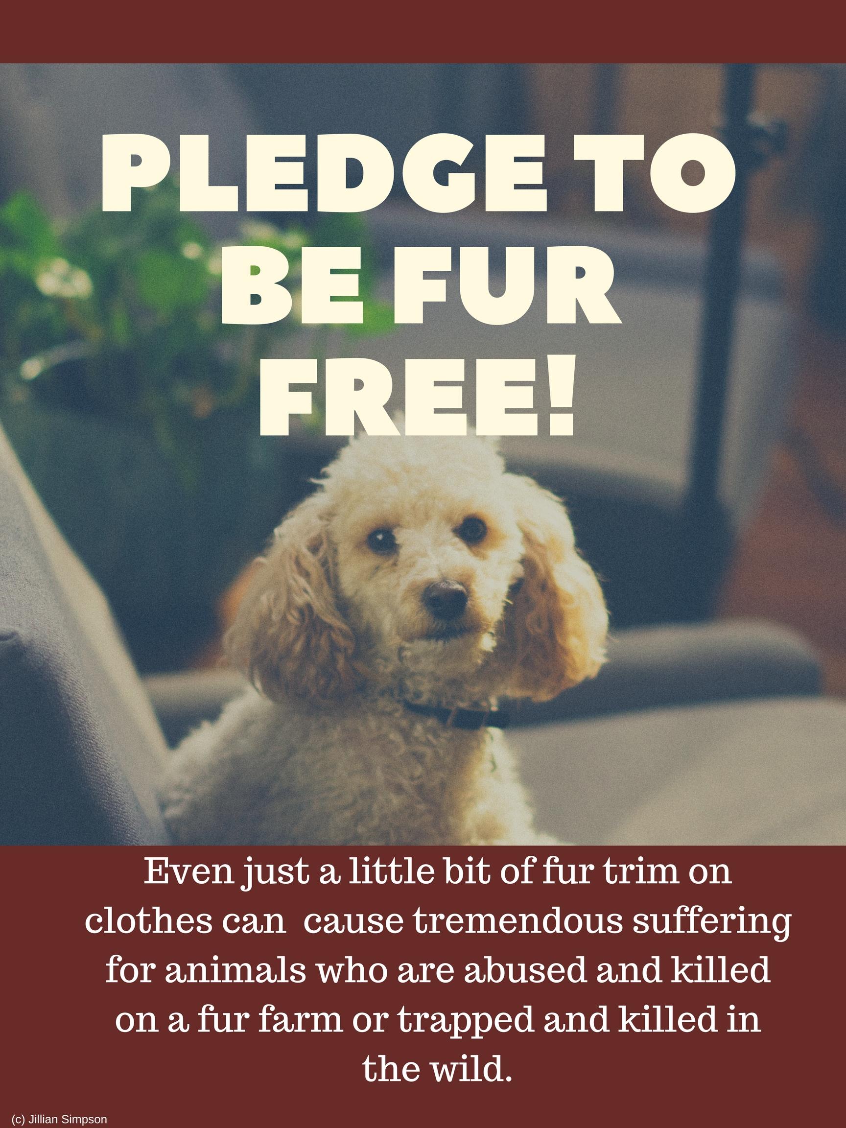 pledge to be fur free!