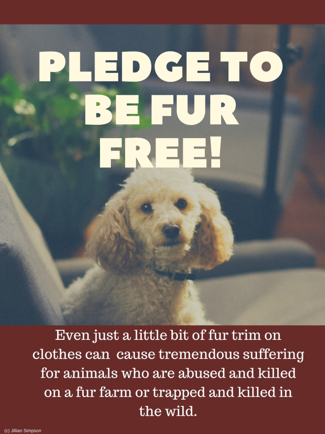 pledge to be fur free!