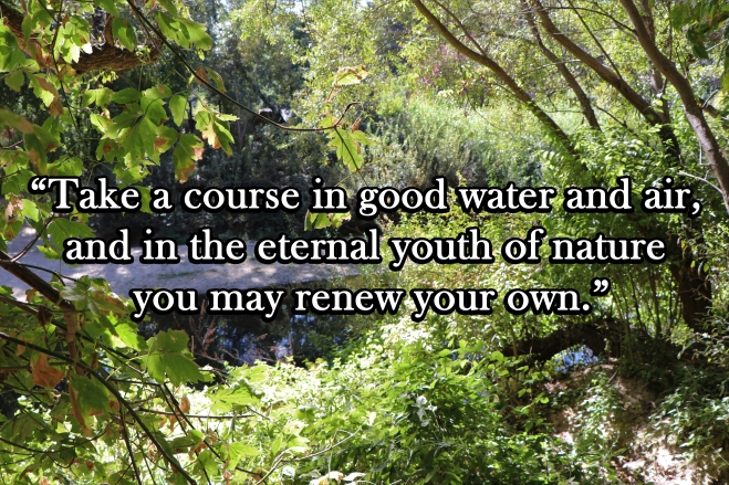 Quote John Muir And The Sierra Club